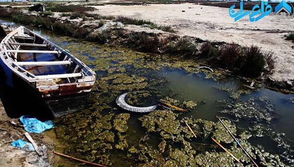 بررسی آلودگی آب دریاها