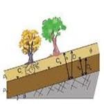 چسبندگی خاک