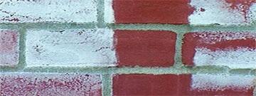 Dandruff Brick-shakhes